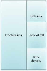 fracture-risk